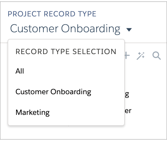 Project_Record_Type_in_Sidebar.png
